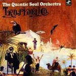 The Quantic Soul Orchestra Tropidelico