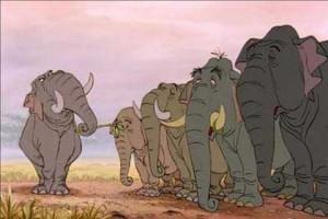 marche des elephants